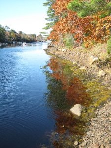 Autumn reflections on the river